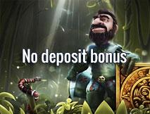 Geen storting bonus casino